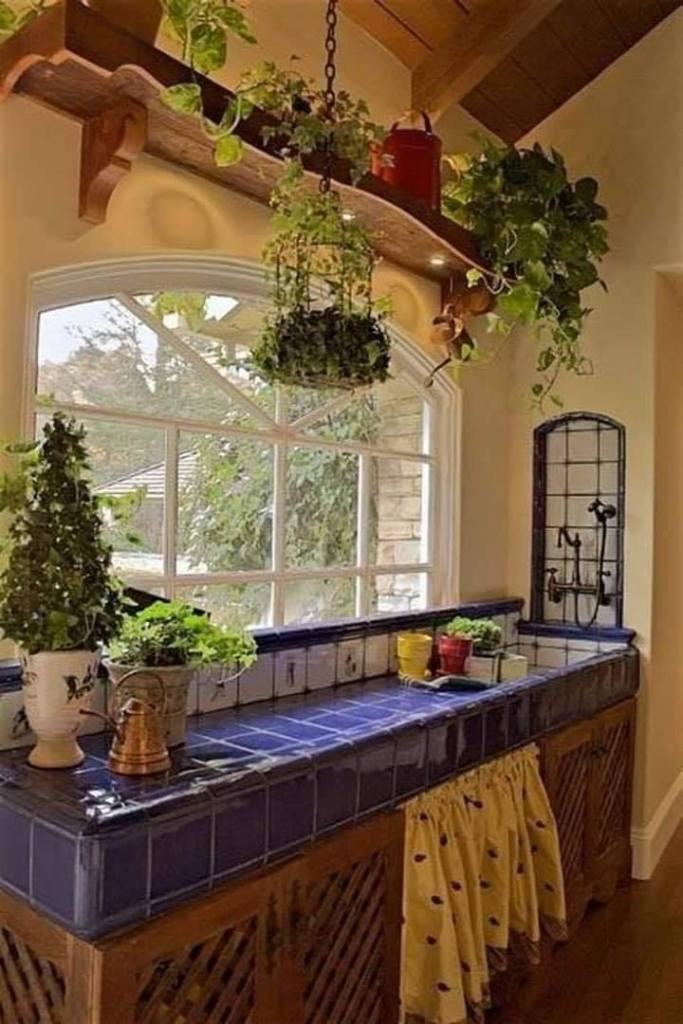 Mexican village kitchen filled with plants
