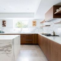 36 The Forbidden Truth About Modern Walnut Kitchen Cabinets Design Ideas Revealed by an Expert