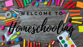 Homeschooling: What Comes Next