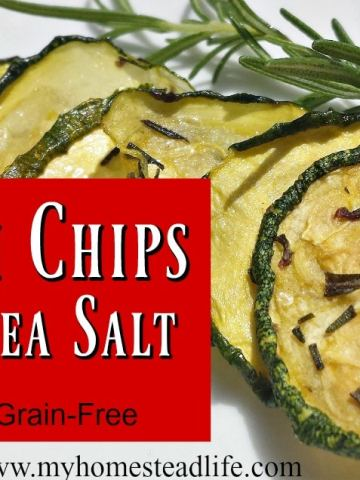 Zucchini Chips- Herb & Sea Salt