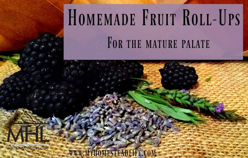 Homemade Fruit Roll-Ups: Blackberry & lavender, for the mature palate