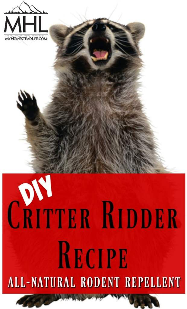 DIY Critter Ridder Recipe-Natural Rodent Repellent