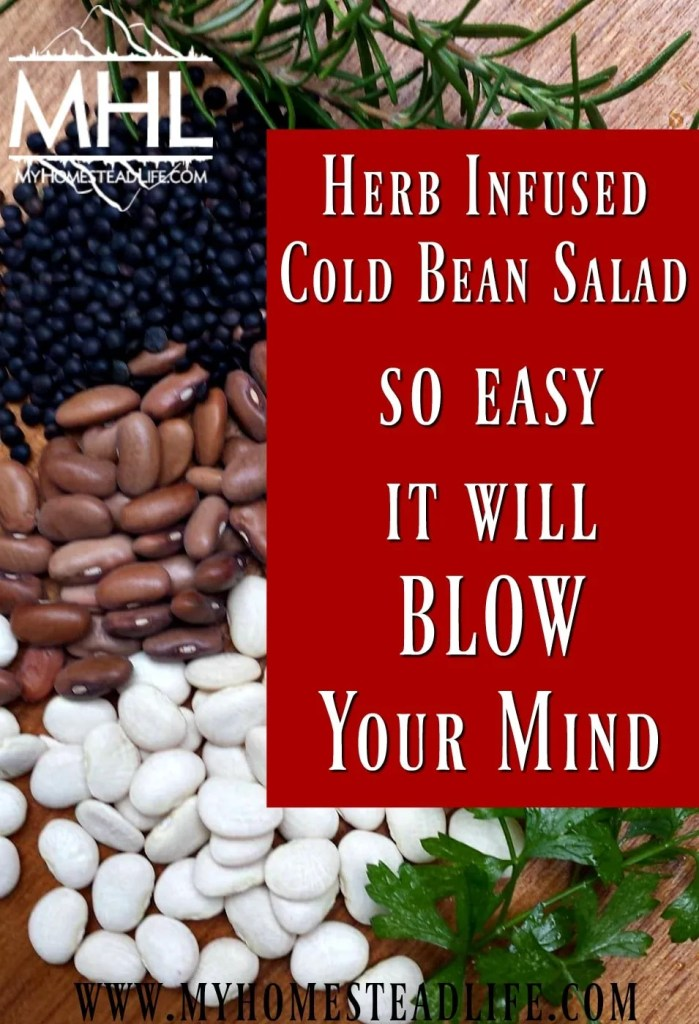 Herb Infused Cold Bean Salad- So easy it will BLOW your mind!
