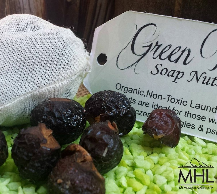 Laundry Soap Nuts 2 oz by My Homestead Life