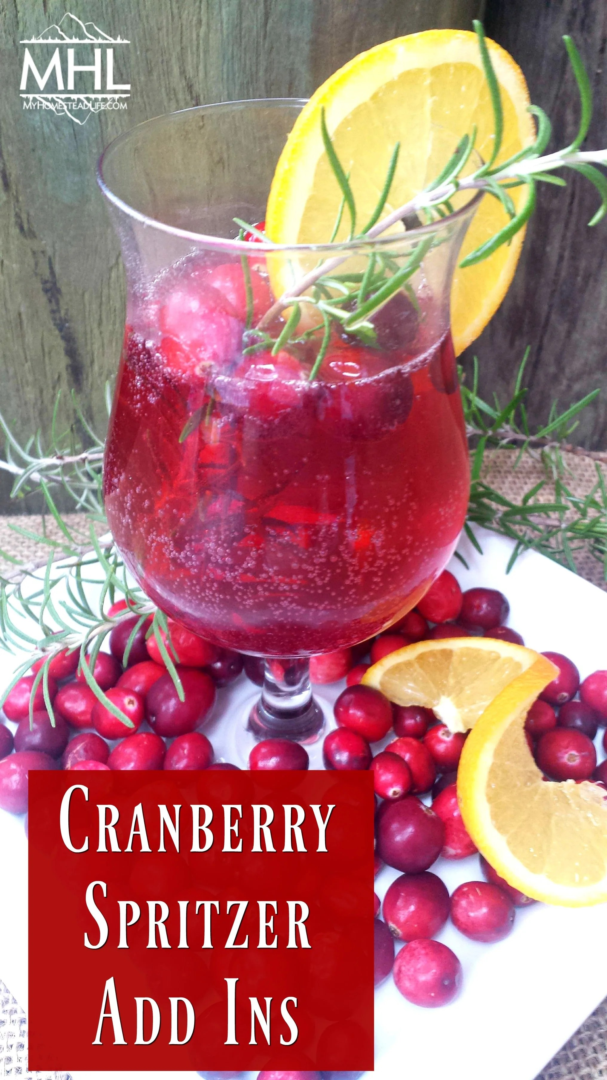 Cranberry Spritzer Add Ins, the perfect addition to your Cranberry Spritzer Mocktail
