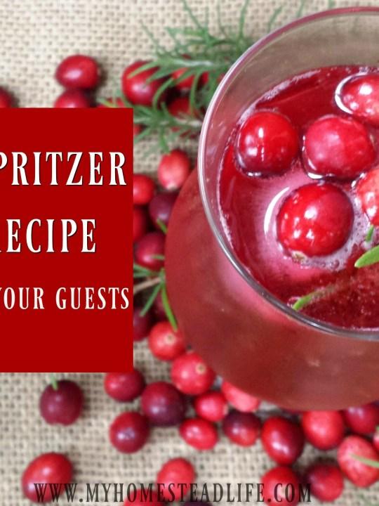 Cranberry Spritzer Mocktail Recipe
