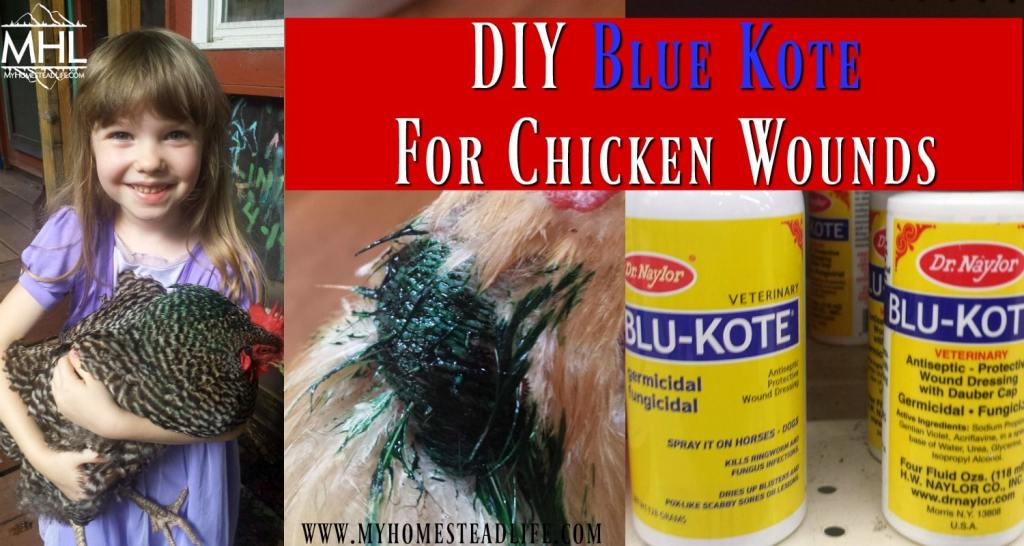 DIY Blue Kote for Chicken Wounds
