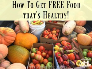 How to Get FREE Food that's Healthy!