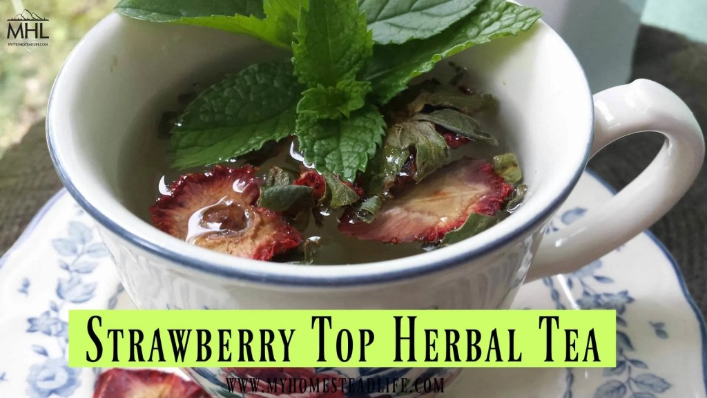 strawberry-herbal-tea
