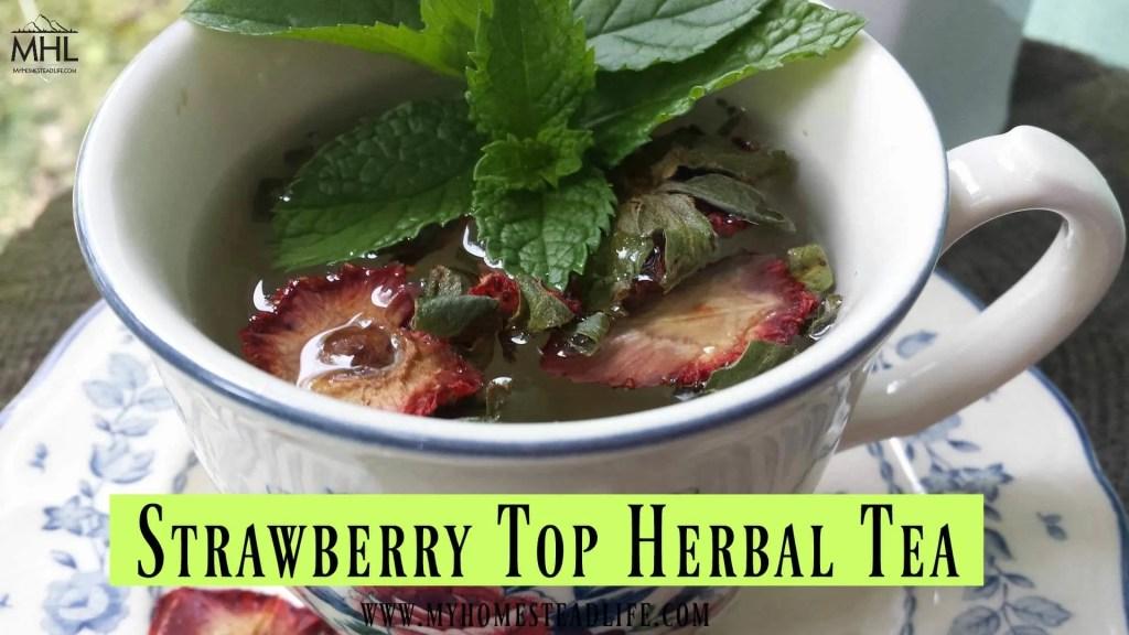 strawberry-herbal-tea