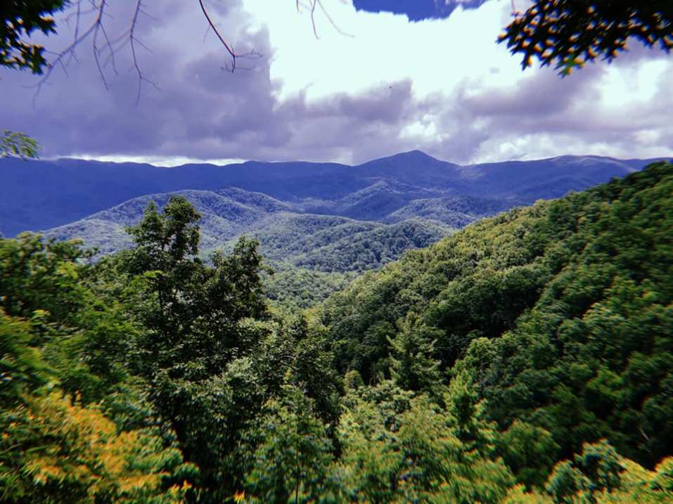 off-grid-living-the-smoky-mountain-homestead
