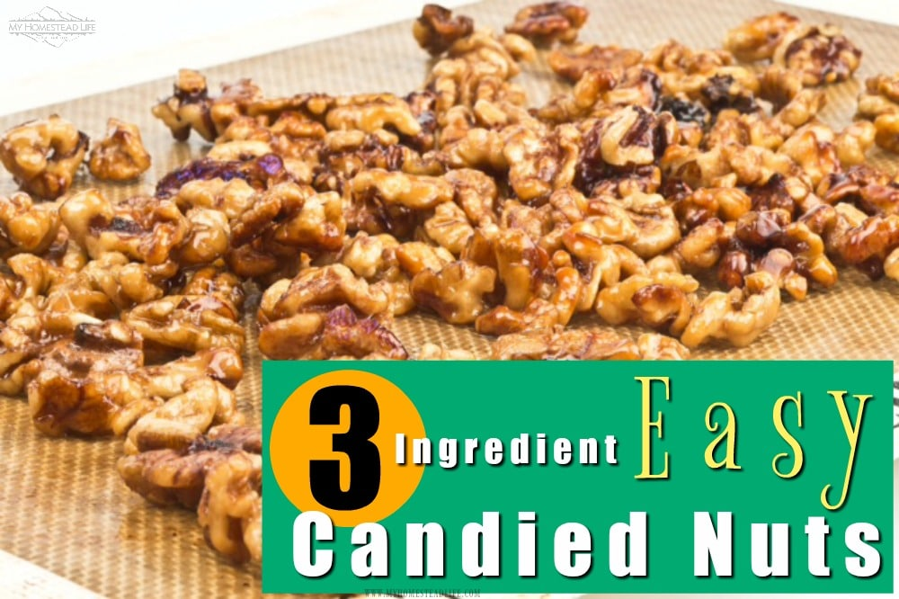 easy-candied-walnuts-how-to-make
