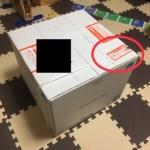 ワールドファミリーレッツプレイの穴が開いた箱