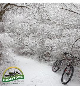 d29-in-snow23.jpg