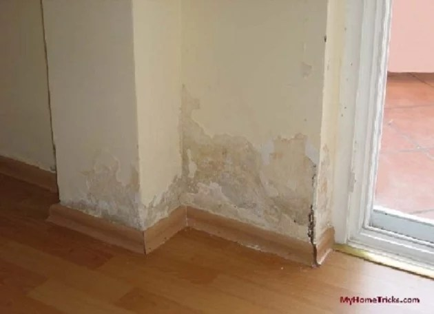 Image result for humidity in house