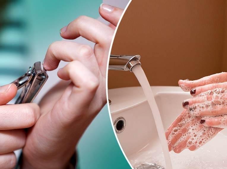 A Descriptive Essay on Personal Hygiene