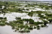 FLOOD AFFECTED KAZIRANGA. IT IS AN ANNUAL FEATURE.