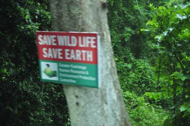 A Hoarding on the National Highway No.37 passing through Kaziranga National Park