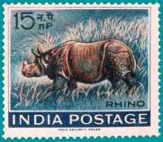 460_Indian_Rhinoceros