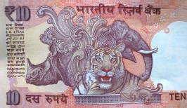 The Government of India Ten Rupee currency note has a Rhinoceros engraved...