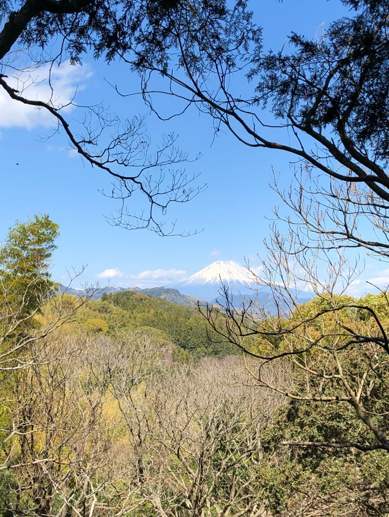 view of Mount Fuji from yatsuyama 静岡市谷津山から見える富士山