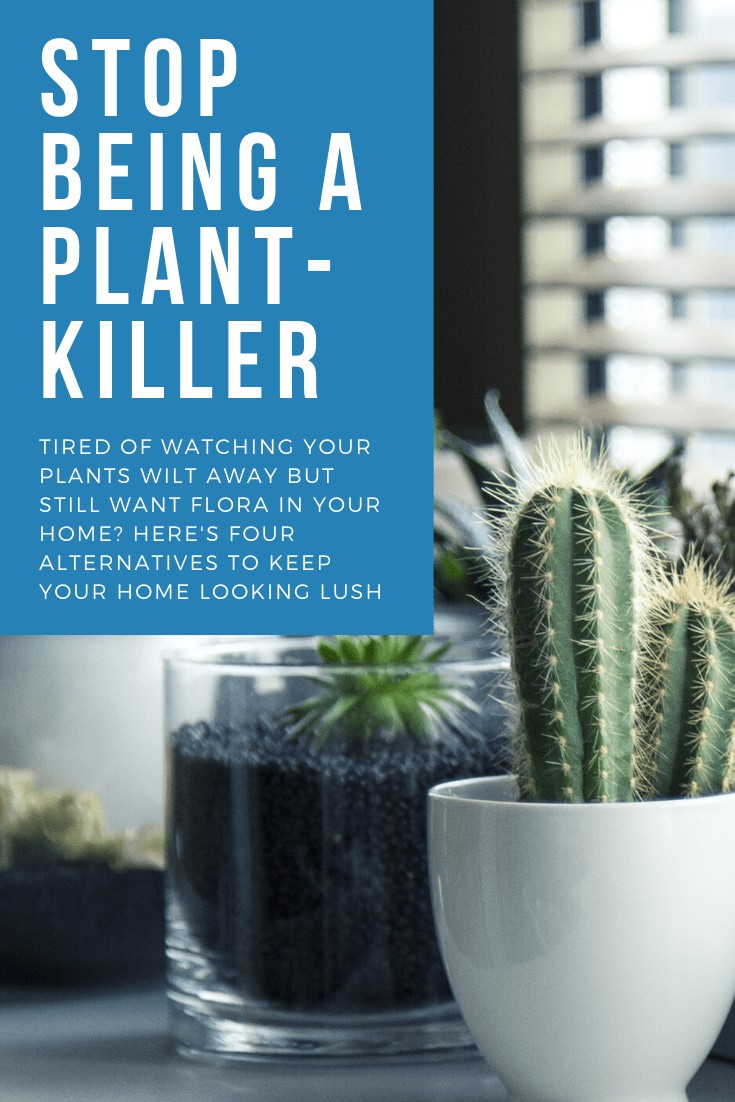 Stop Killing Plants