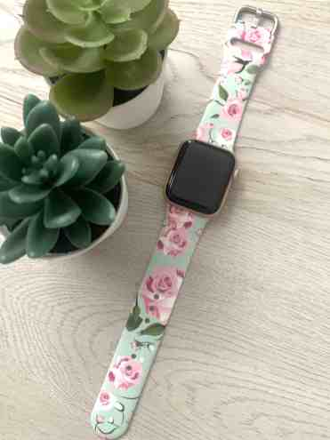 Apple Watch Bands: Qinmu