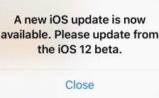 Bug in the latest iOS 12 beta how to fix