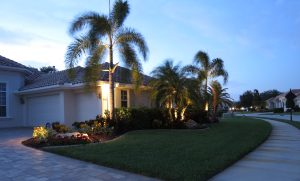 Curb Appeal | Landscape Lighting | Illuminate Landscape Lighting