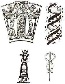 https://i2.wp.com/myimages.bravenet.com/178/181/915/6/sumerian_helix.jpg