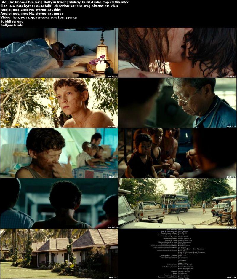 The Impossible 2012 BluRay 350MB Hindi Dual Audio 480p ESub Download