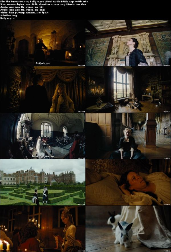 The Favourite 2018 BRRip 350Mb Hindi Dual Audio 480p ESub Download