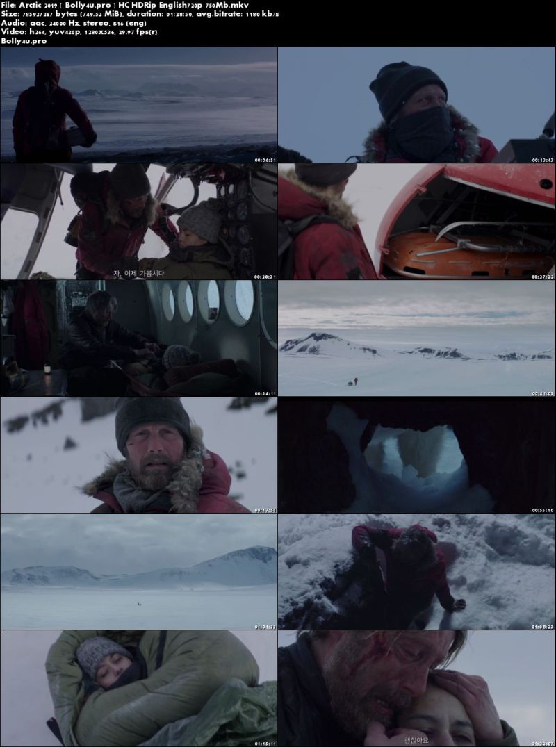 Arctic 2019 HC HDRip 280Mb English 480p Download