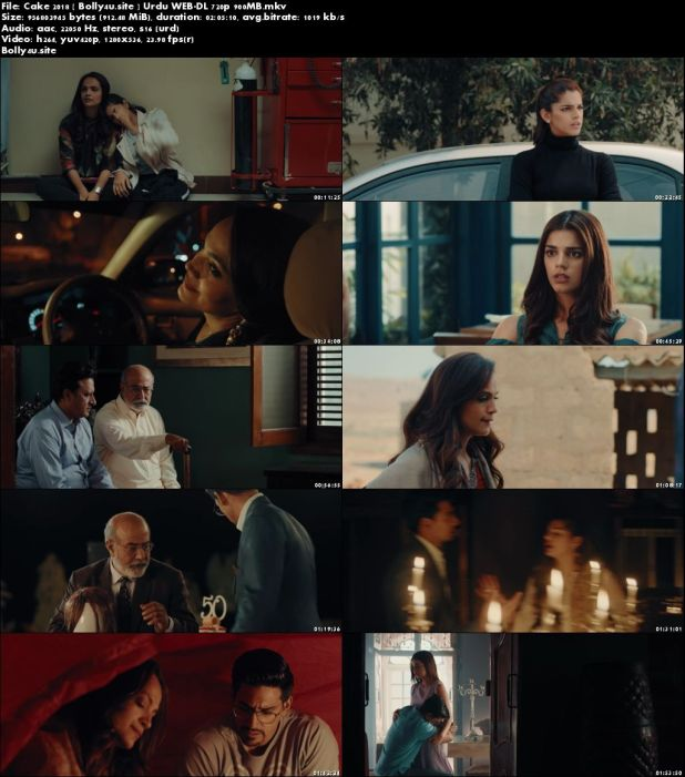 Cake 2018 WEB-DL 900Mb Urdu 720p Download