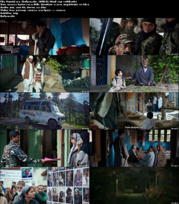 Hamid 2018 WEB-DL 300MB Hindi 480p ESub Download