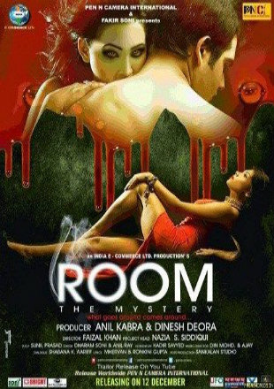 Room The Mystery 2015 WEB-DL 300Mb Hindi 480p Watch Online Full Movie Download bolly4u