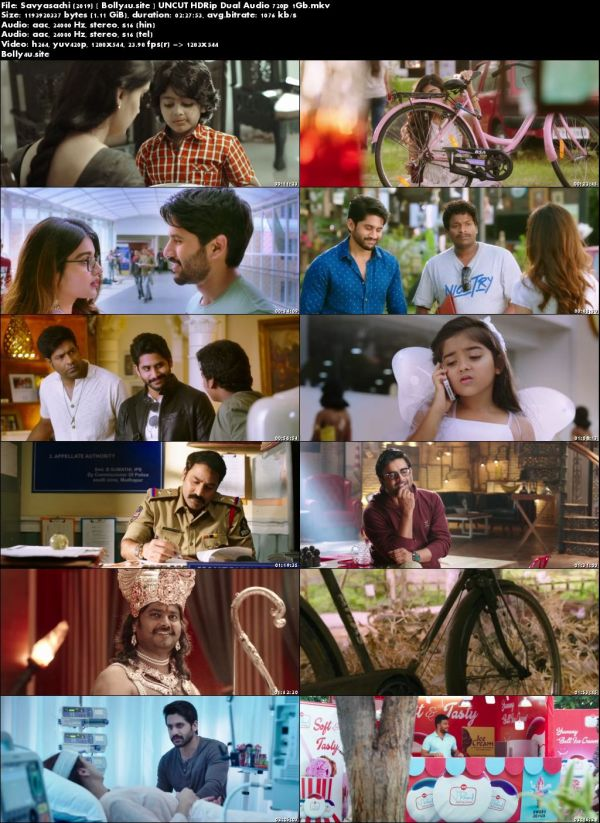 Savyasachi 2019 HDRip 450MB UNCUT Hindi Dual Audio 480p Download