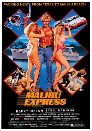 Malibu Express 1985 BRRip 300MB Hindi Dual Audio 480p Watch Online Full Movie Download bolly4u