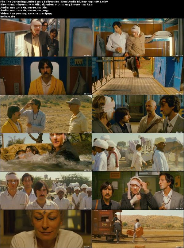 The Darjeeling Limited 2007 BluRay 300MB Hindi Dual Audio 480p Download