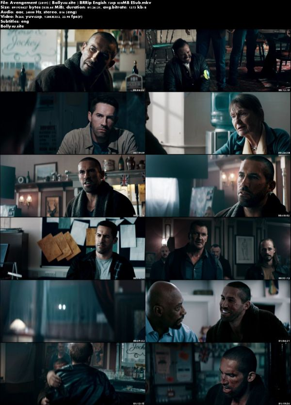 Avengement 2019 BRRip 250MB Engish 480p ESub Download