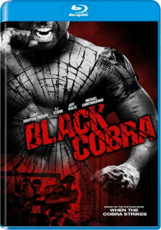 Black Cobra 2012 BluRay 800MB Hindi Dual Audio 720p Watch Online Full Movie Download bolly4u