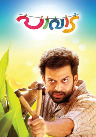 Pavada 2016 HDRip 450MB UNCUT Hindi Dual Audio 480p watch Online Full Movie Download bolly4u