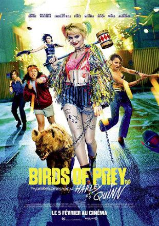 Birds Of Prey 2020 HC HDRip 850MB Hindi Dual Audio 720p Watch Online Full Movie Download bolly4u