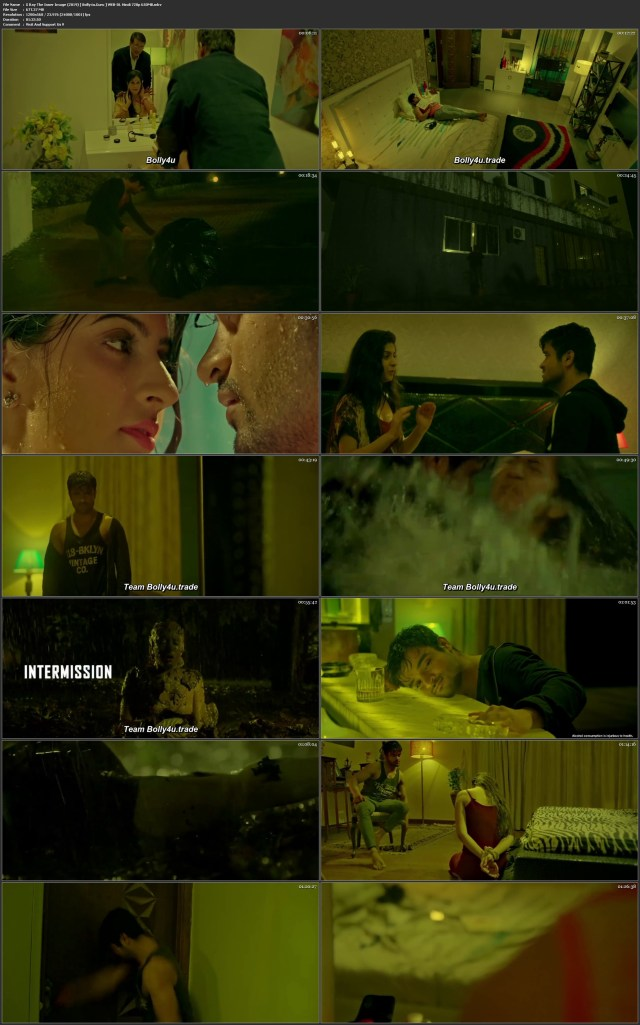 X Ray The Inner Image 2019 WEB-DL 300Mb Hindi Movie Download 480p