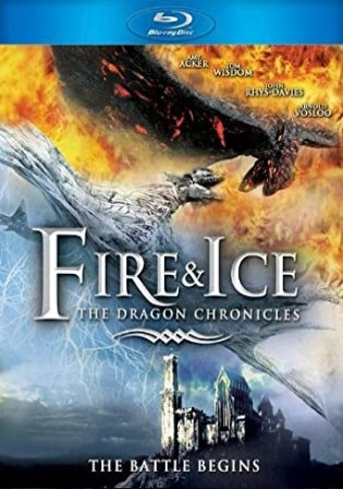 Fire and Ice The Dragon Chronicles 2008 BluRay 300Mb Hindi Dual Audio 480p Watch Online Full Movie Download bolly4u