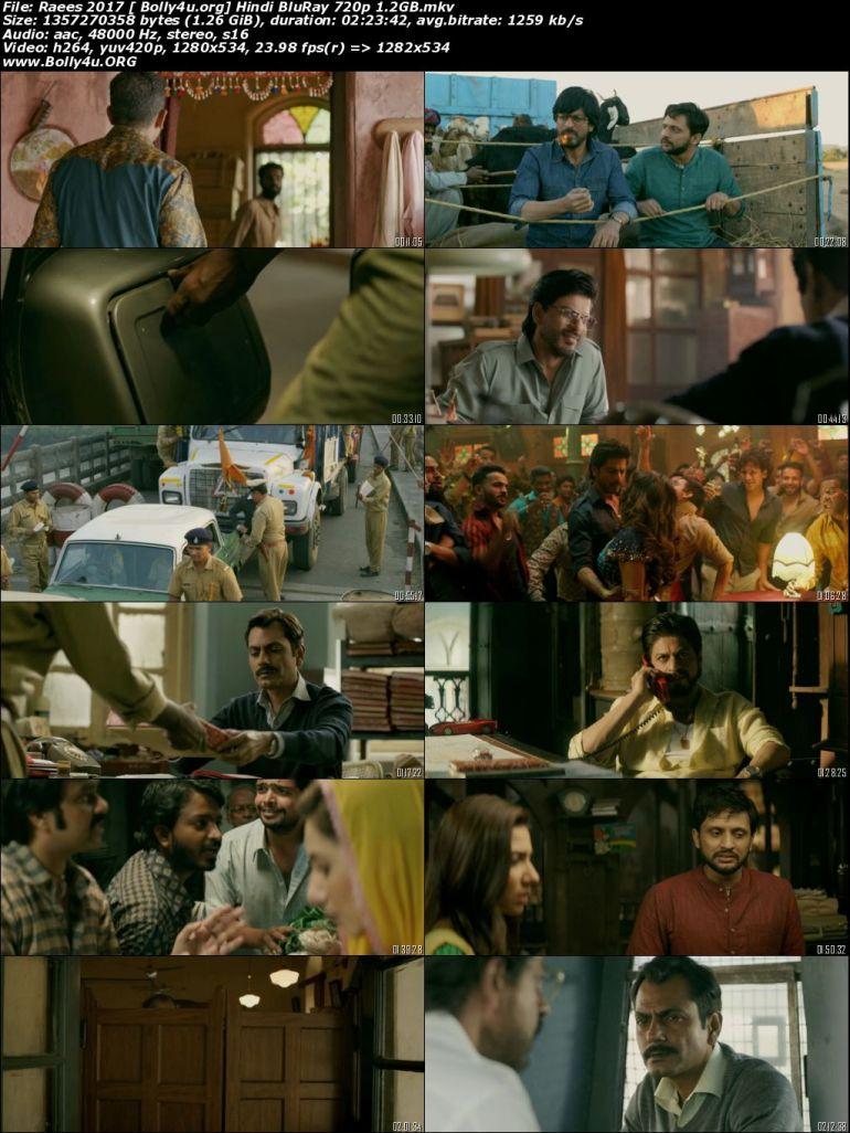 Raees 2017 BluRay 400MB Full Hindi Movie Download 480p