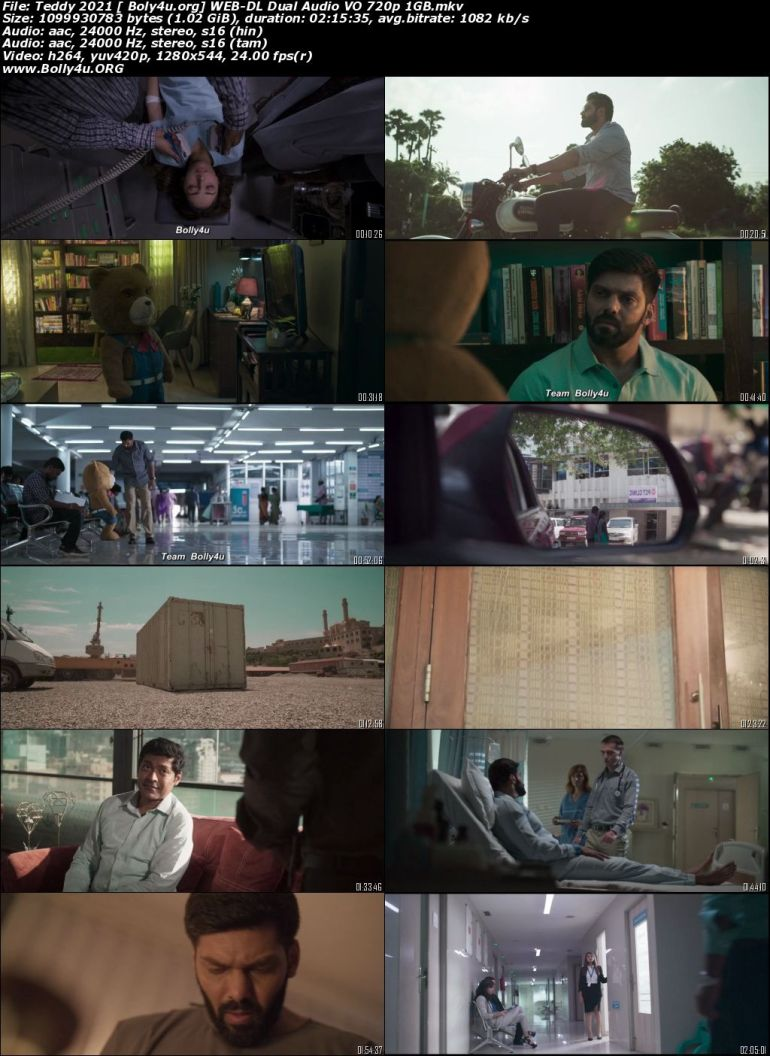 Teddy 2021 WEB-DL 1GB Hindi (Voice Over) Dual Audio 720p Download