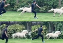 Photo of Dhoni races with a horse, know who won