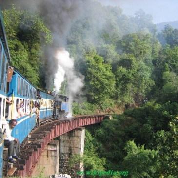 5Consejos para Viajar a India