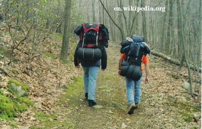 Top Consejos para Llevar Mochilas de Trekking I Parte
